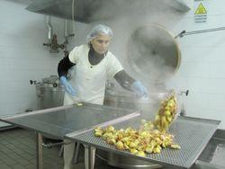Fresh cooked artichokes